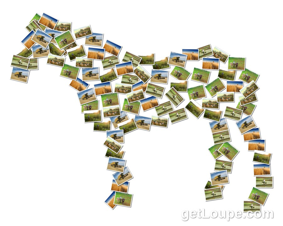 Traditional Economy Loupe Collage Loupe