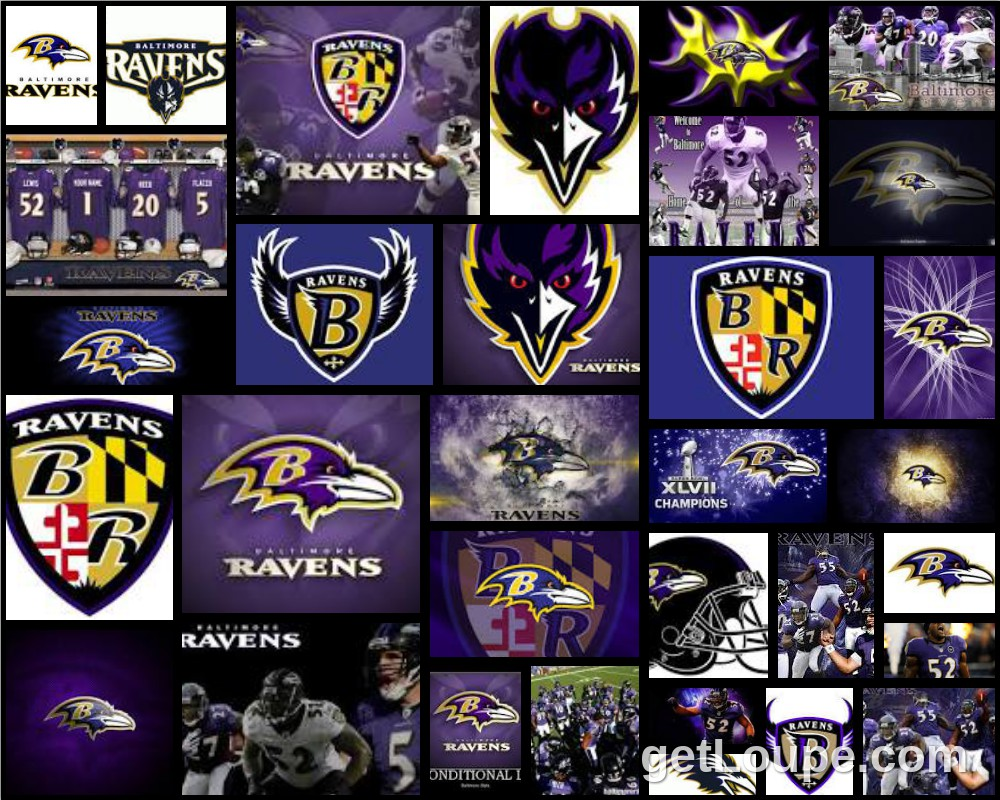What is the baltimore ravens mascot name - Baltimoreravens Mascot Team Name Players