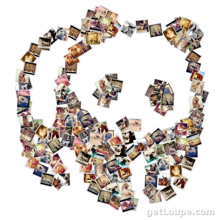 Shape collage pro v 2 5 3 final macdwedlumbspan s diary - Como hacer un collage de fotos a mano ...